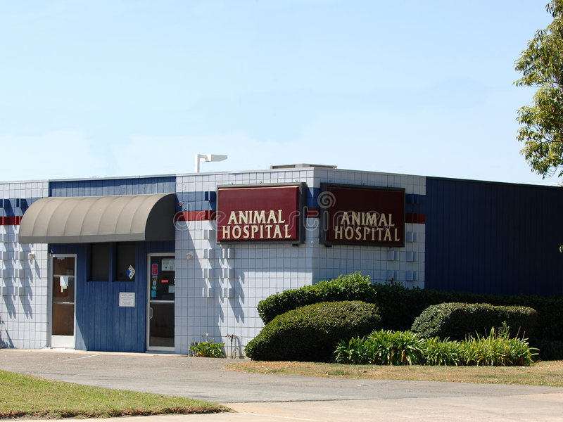 Animal Hospital stock photo