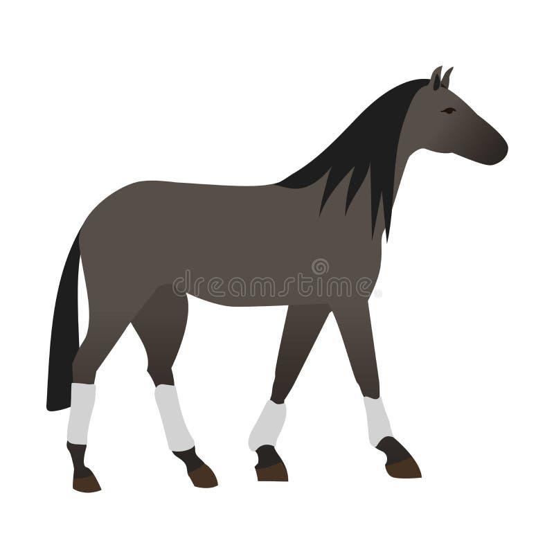 Download Animal Isolado Vetor Do Cavalo Ilustração do Vetor - Ilustração de racehorse, ilustração: 80100310