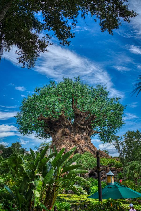 Free Animal Kingdom, Disney Tree Of Life Royalty Free Stock Images - 159564299