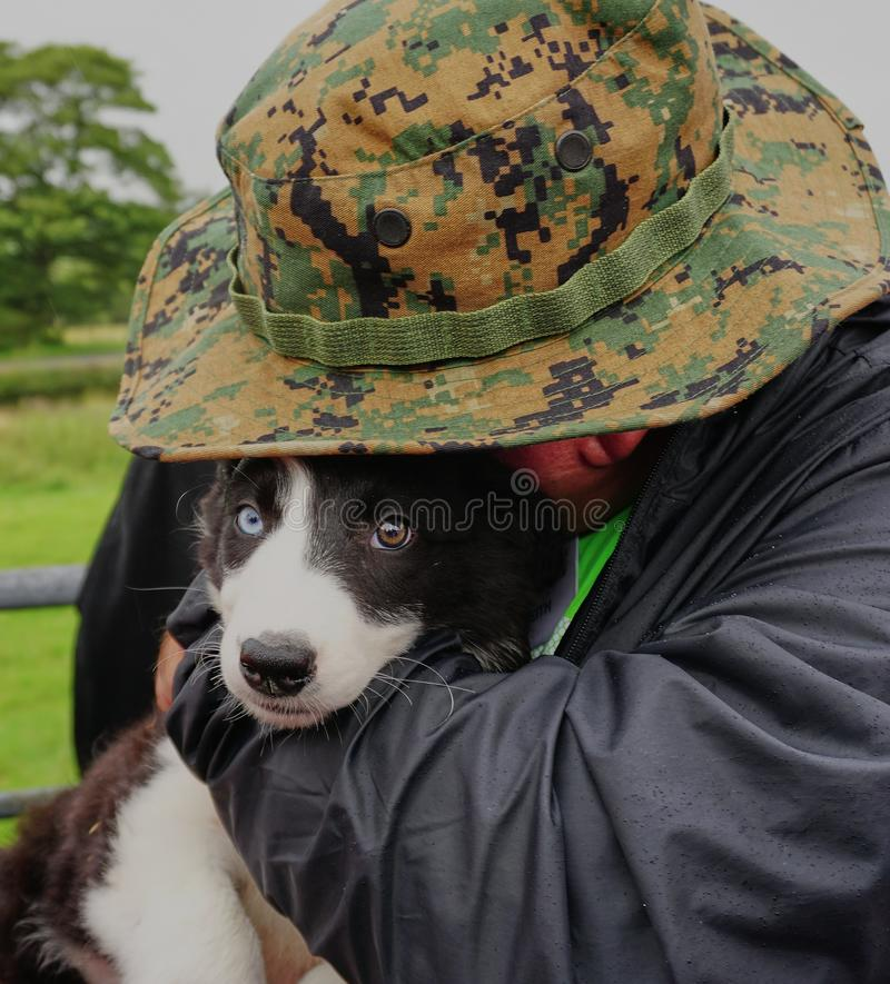Animal Lover Hugs Beautiful Sheep Dog Puppy - Wales UK. royalty free stock images