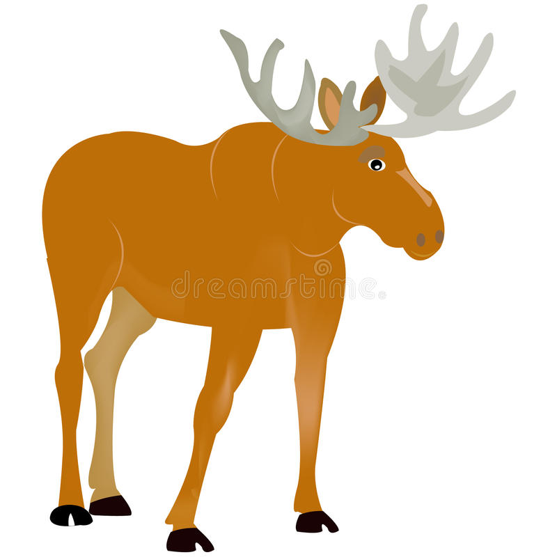 Download Animal moose stock vector. Illustration of moose, animal - 17774935