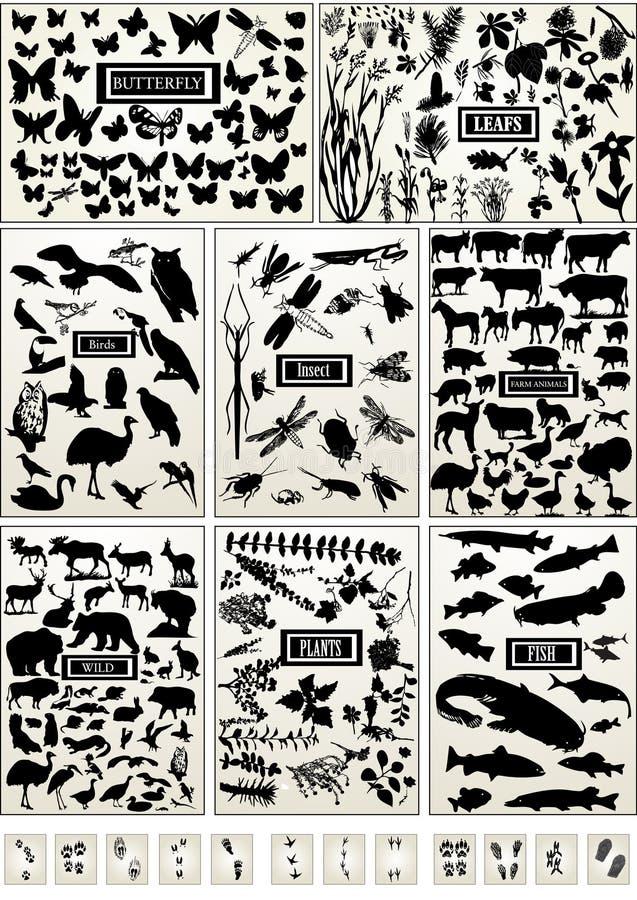 Animal, pássaro, peixes, inseto, borboleta e planta ilustração do vetor