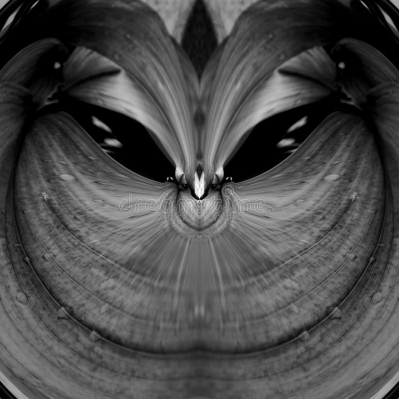 Animal Pet Cats Eyes Abstract Art illustration de vecteur