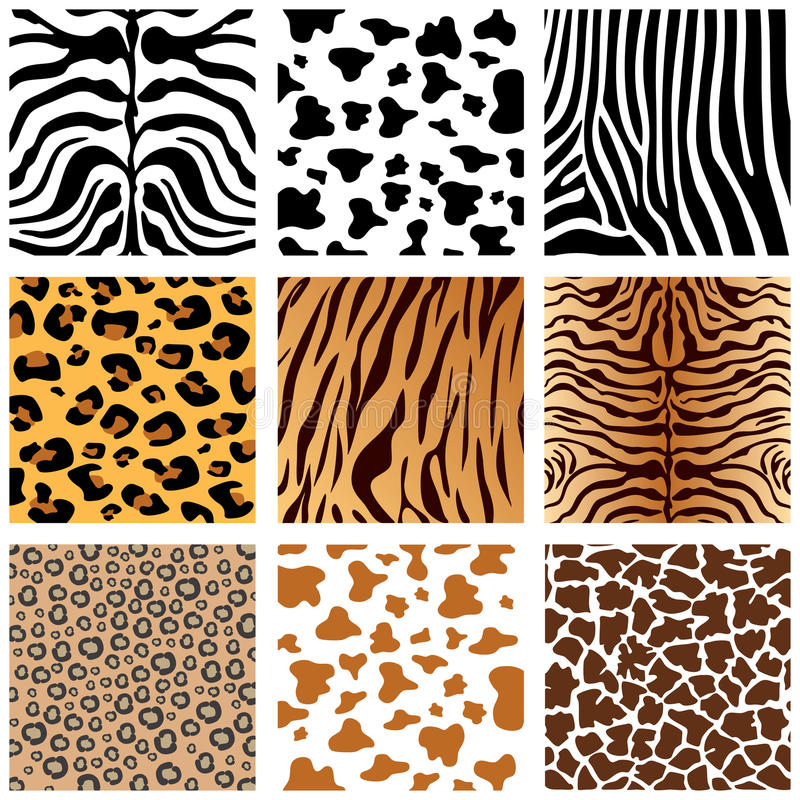 Animal Print royalty free illustration