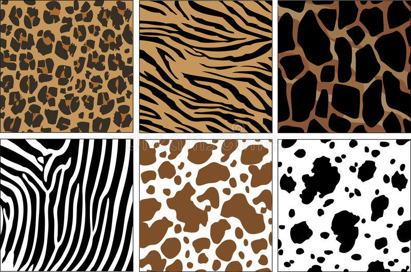 Animal Prints vector illustration