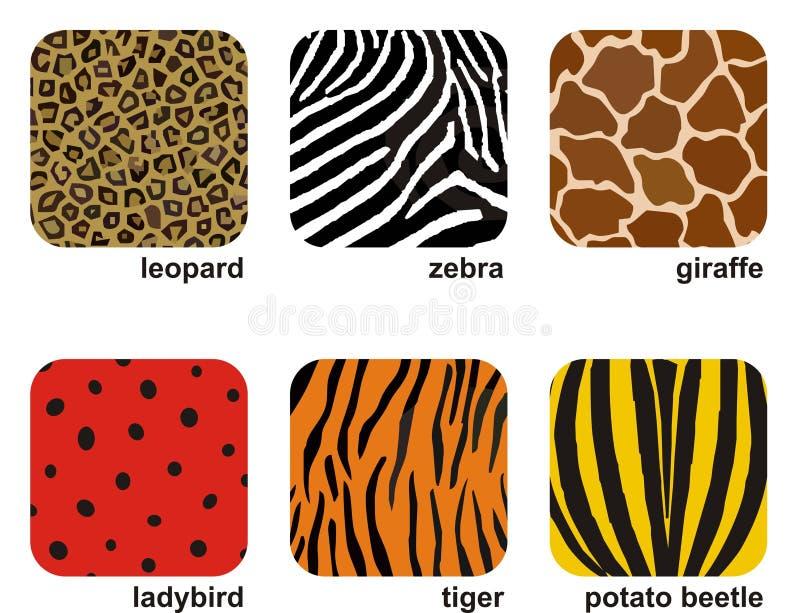 Animal prints. Set of 6 animal and insect prints stock illustration