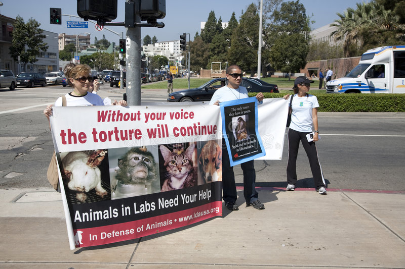 Animal Rights Activists at UCLA royalty free stock photo
