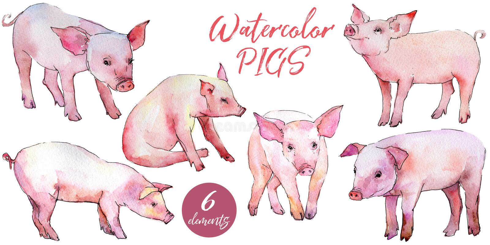Animal sauvage de porc dans un style d'aquarelle d'isolement illustration de vecteur
