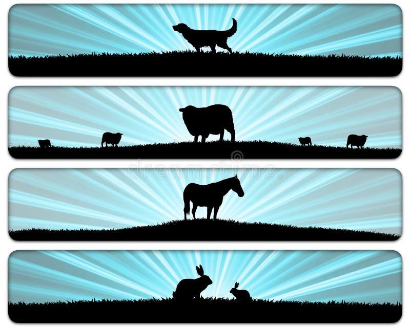 Animal Scenes royalty free stock image