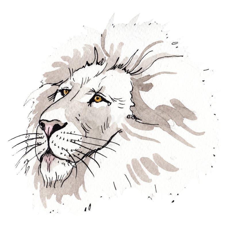 Animal selvagem do leão exótico em um estilo da aquarela isolado Grupo da ilustração do fundo da aquarela fotografia de stock royalty free