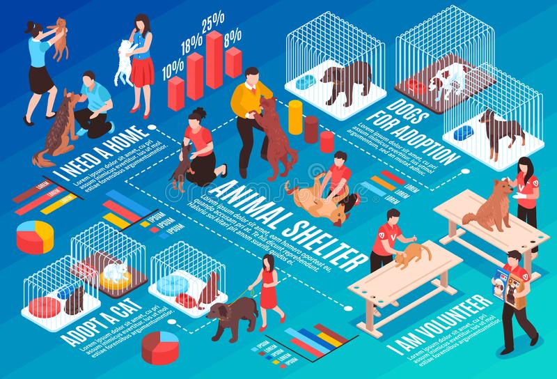 Animal Shelter Isometric Flowchart. With human characters dogs and cats for adoption gradient background horizontal vector illustration vector illustration
