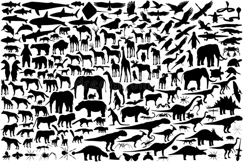 Animal silhouettes. Diverse set of editable vector animal outlines stock illustration