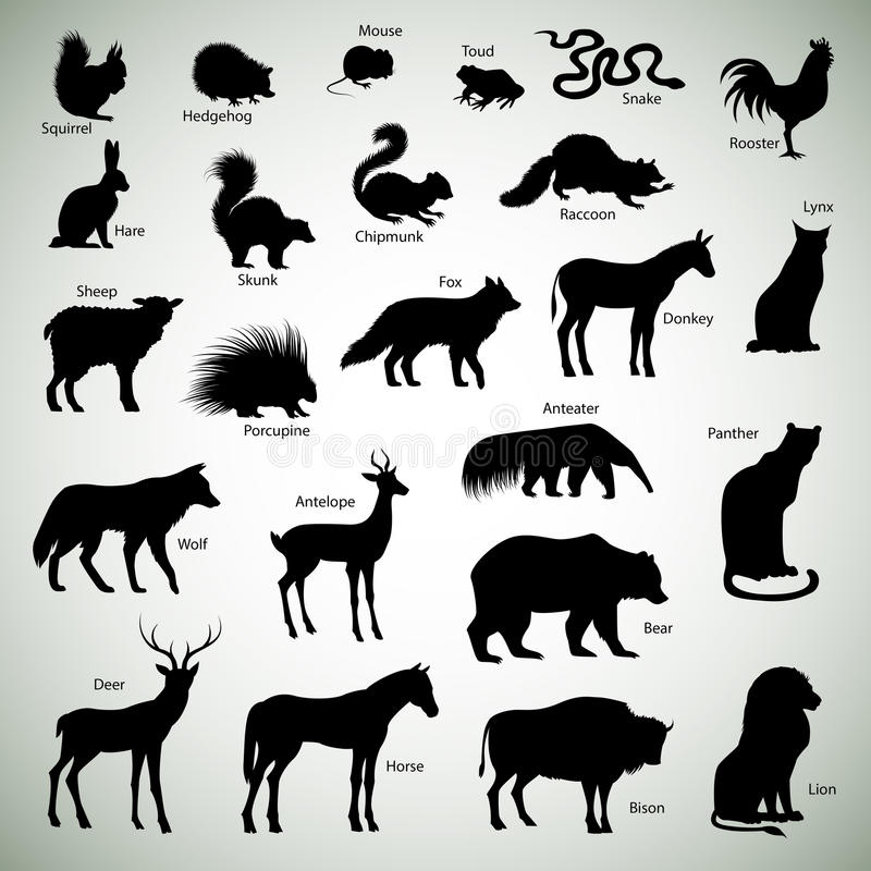 Animal silhouettes. Set of animal silhouettes on abstract background
