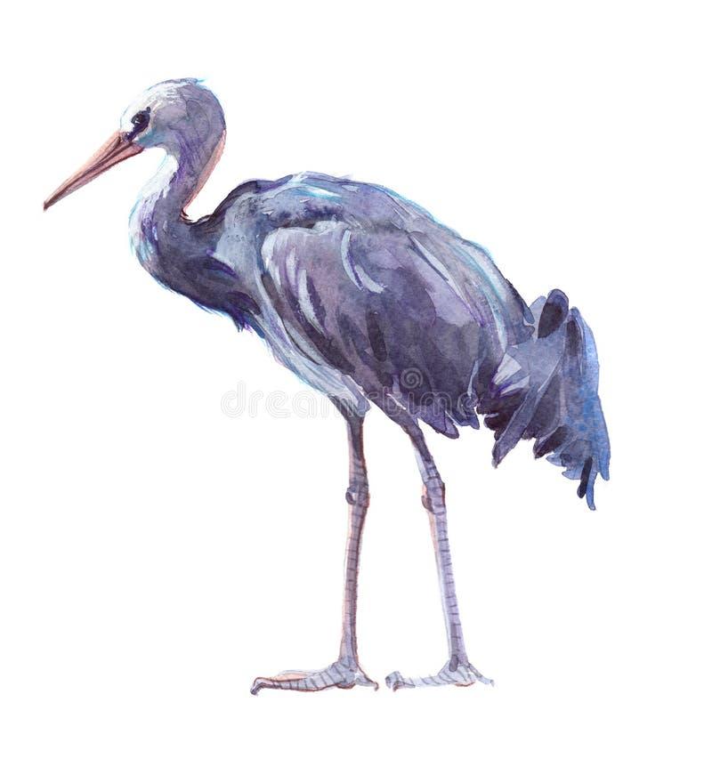 Animal simple de grue d'aquarelle d'isolement illustration de vecteur