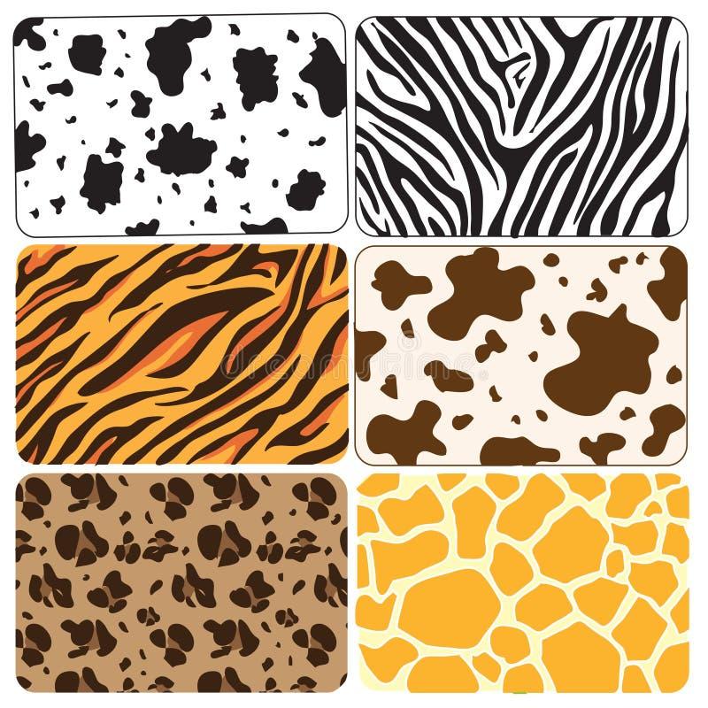 Download Animal skin stock vector. Illustration of skin, pattern - 6415363