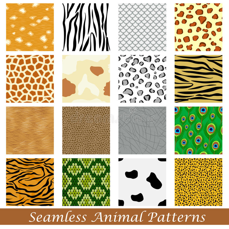 Animal Skin Seamless Pattern vector illustration