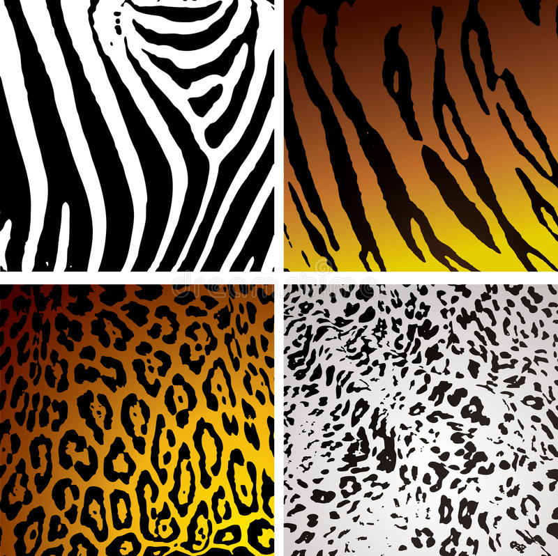 Download Animal skin variation stock vector. Illustration of curve - 9939952