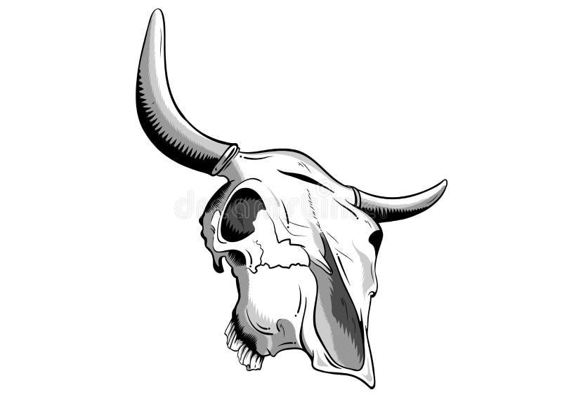 Download Animal Skull Royalty Free Stock Photo - Image: 16028115