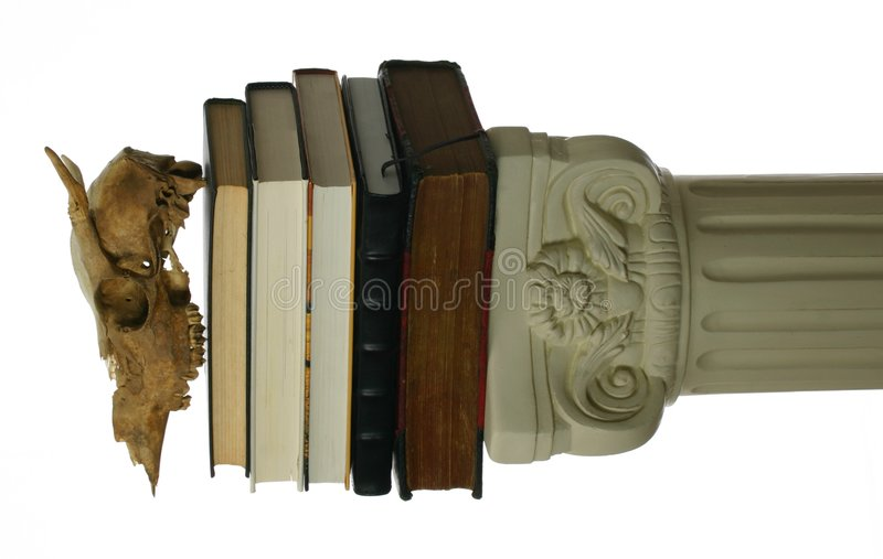 Download Animal Skull On Stack Of Books Stock Image - Image: 4066663