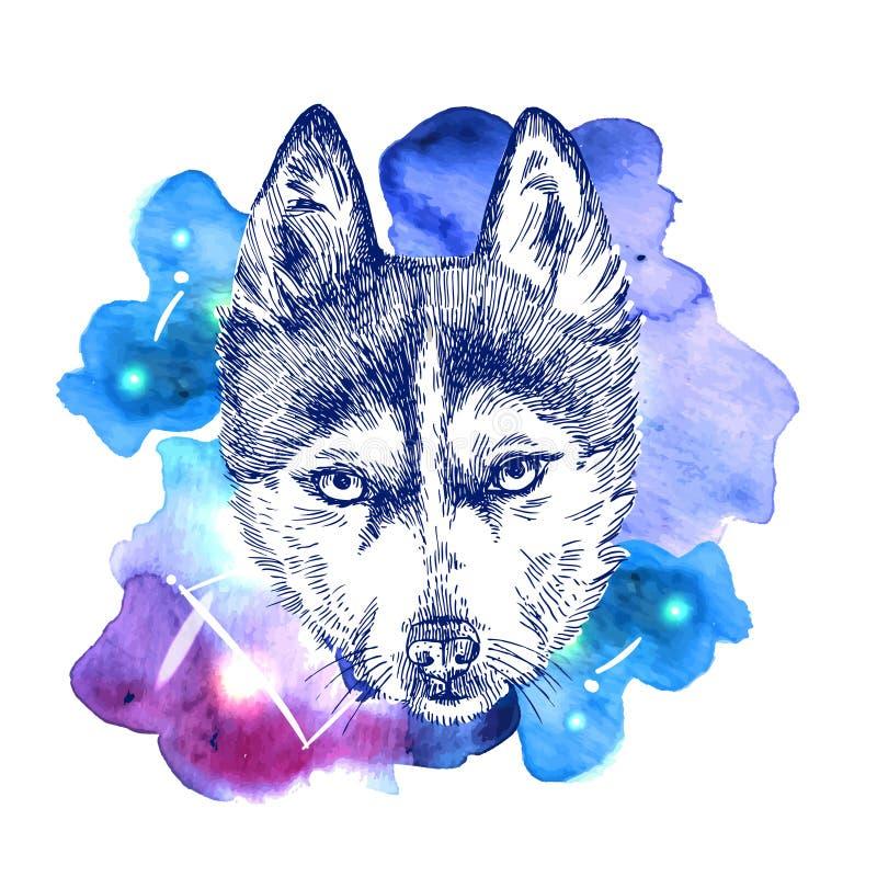 Animal sur l'espace d'aquarelle illustration de vecteur