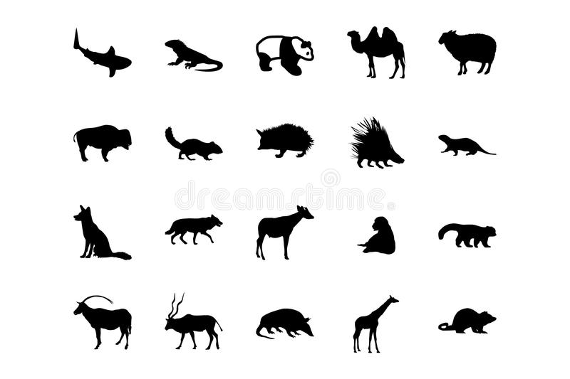Animal Vector Icons 3. You don't need to take a trip to the zoo to enjoy amazing animals! With this Animal Vector Pack, you'll have all the awesome s you need royalty free illustration