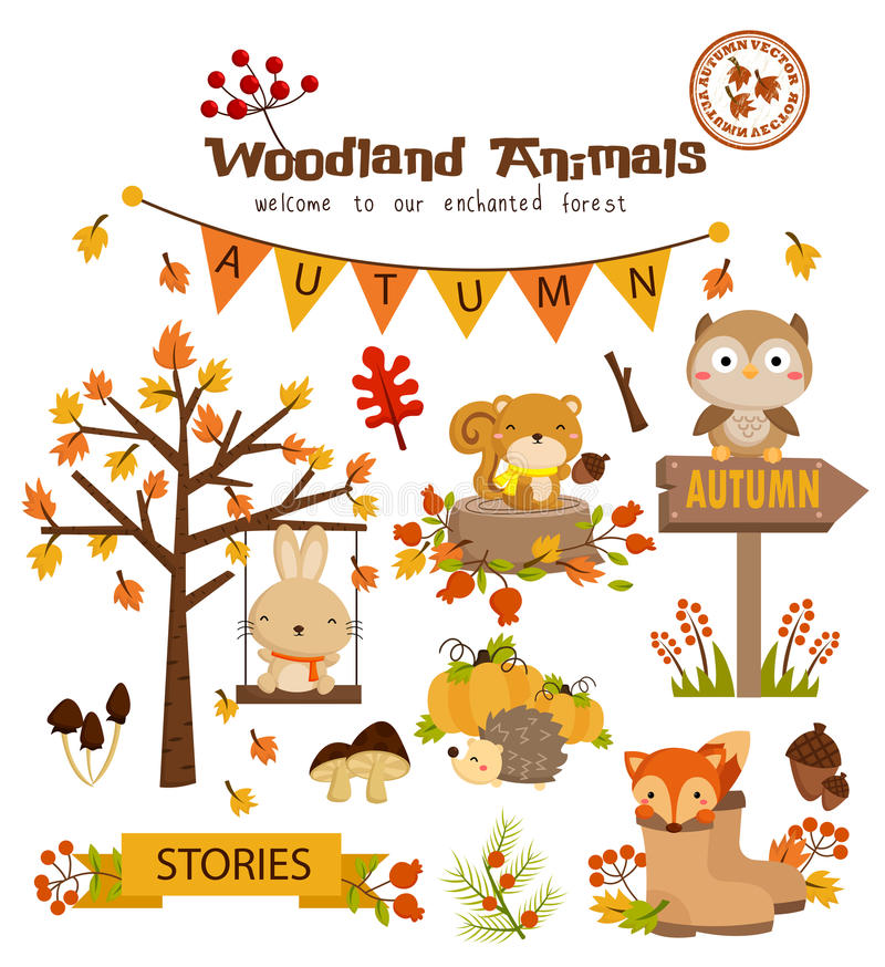 Animal woodland autumn vector set royalty free stock photography