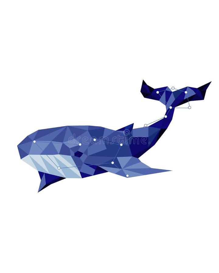 animale della costellazione con le stelle Balena blu nel poli stile basso illustrazione vettoriale
