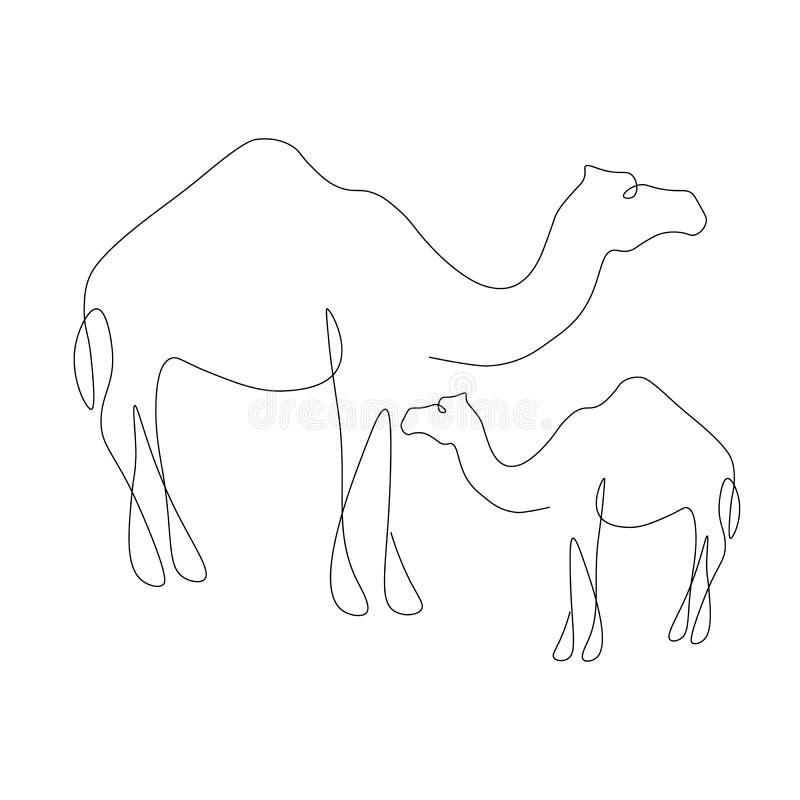 Animale della famiglia dei cammelli su fondo bianco, vettore selvaggio dell'Africa illustrazione vettoriale