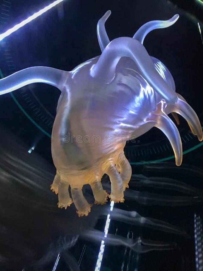 Animale di alto mare sconosciuto Modello di plastica immagine stock libera da diritti