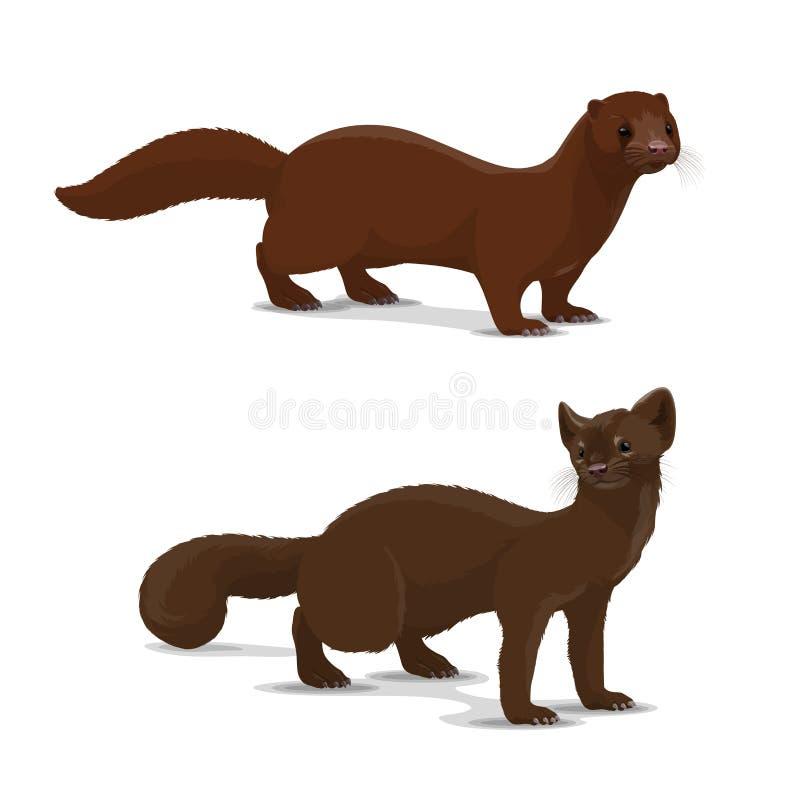 Animale di vettore del fumetto del visone e del nero illustrazione vettoriale