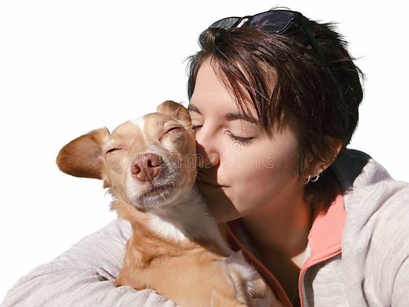 Animale domestico che ama nell'ambito della luce solare fotografia stock libera da diritti