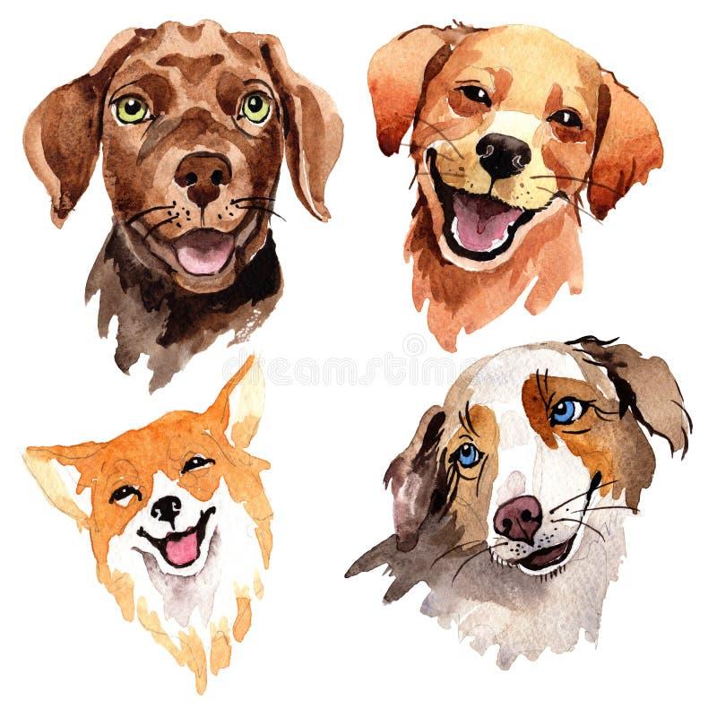Animale selvatico esotico del cane in uno stile dell'acquerello isolato royalty illustrazione gratis