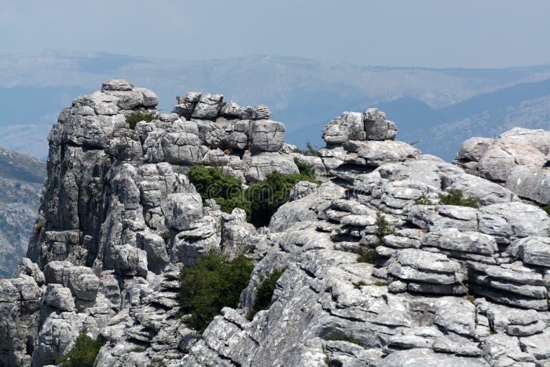 Animale spagnolo dello stambecco sulle montagne di EL Torcal fotografia stock libera da diritti