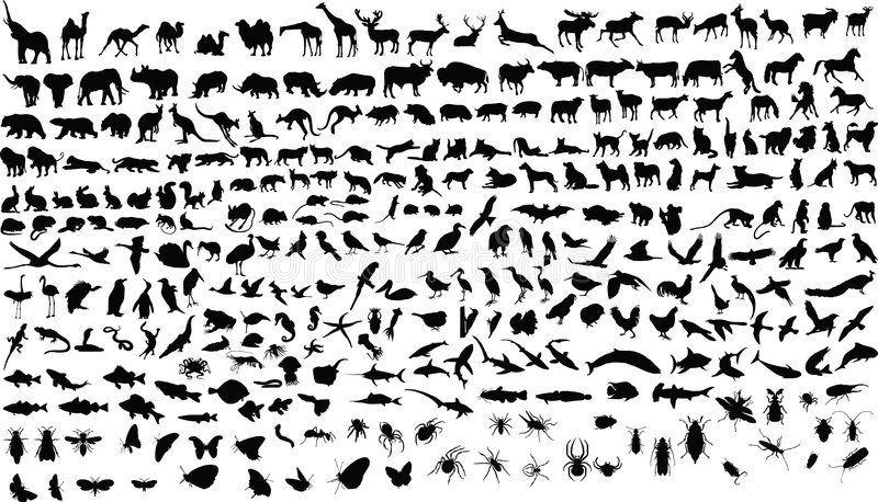 Animales ilustración del vector