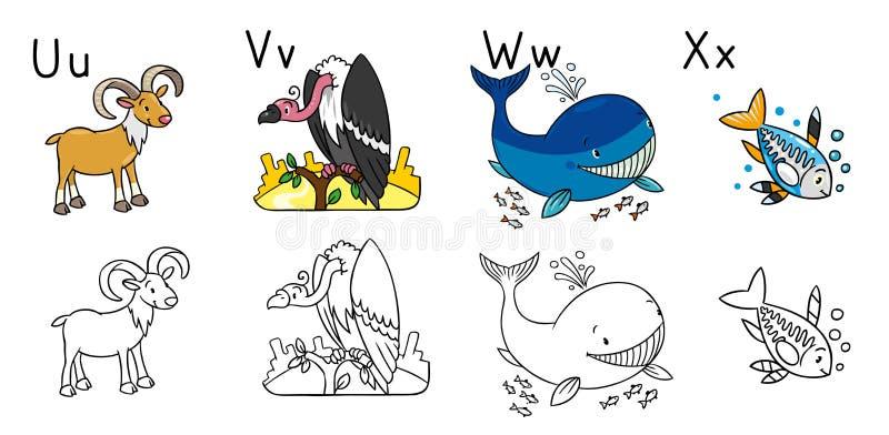 Animales Alfabeto O ABC Libro De Colorante Ilustración del Vector ...