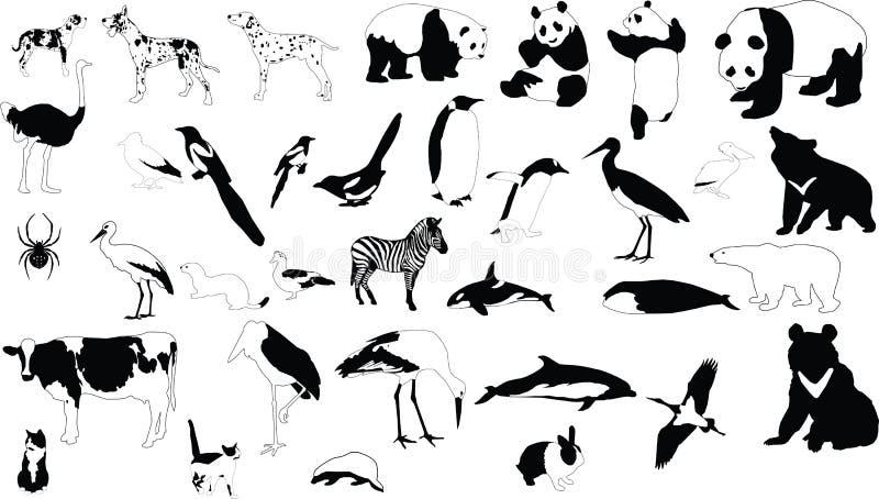 Animales blancos y negros libre illustration