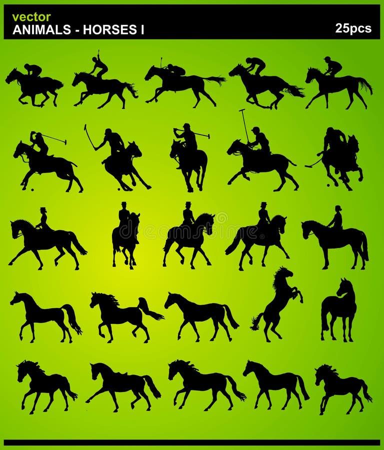 Animales - caballos I imagen de archivo