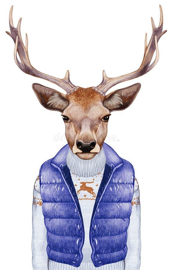 Animales como ser humano El retrato de ciervos en abajo concede y suéter stock de ilustración