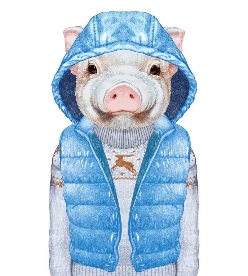 Animales como ser humano El retrato de guarro en abajo concede y suéter libre illustration