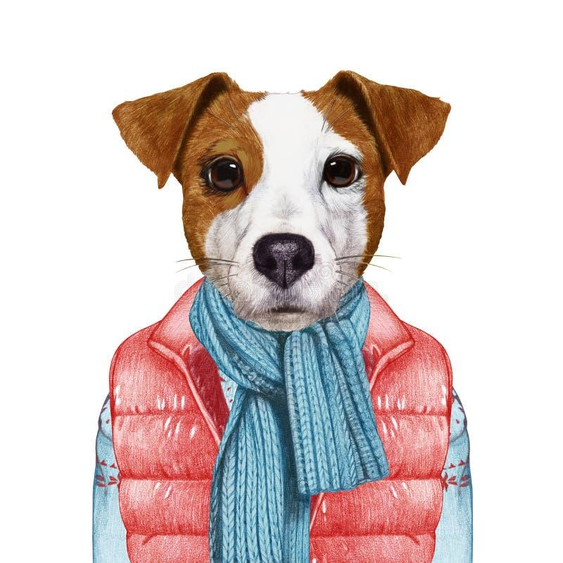 Animales como ser humano El retrato de Jack Russell en abajo concede y suéter ilustración del vector