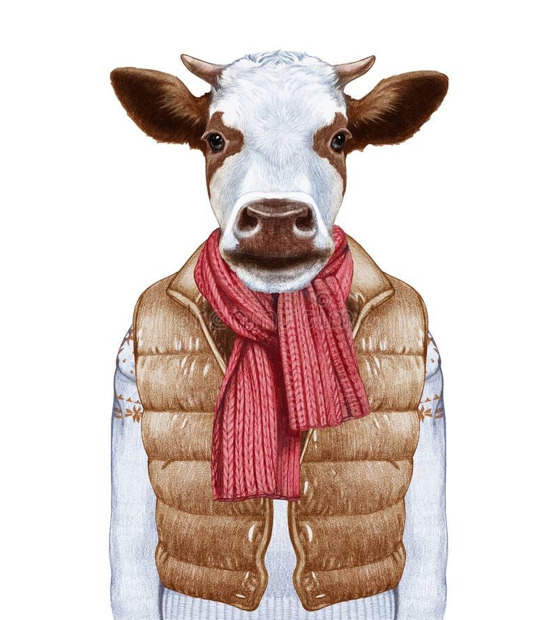 Animales como ser humano El retrato de la vaca en abajo concede y suéter stock de ilustración