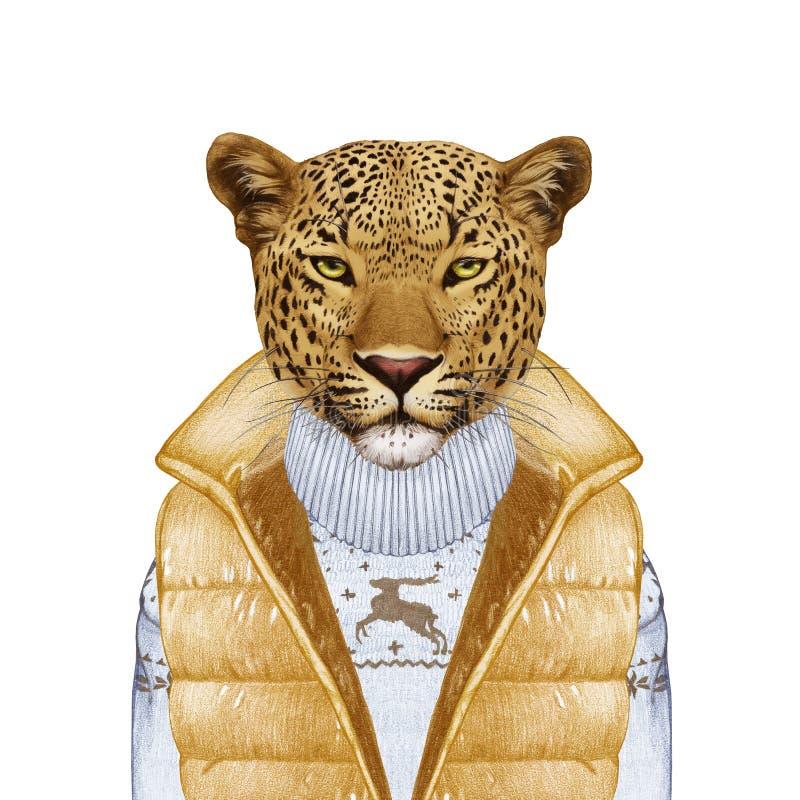 Animales como ser humano El retrato del leopardo en abajo concede y suéter libre illustration