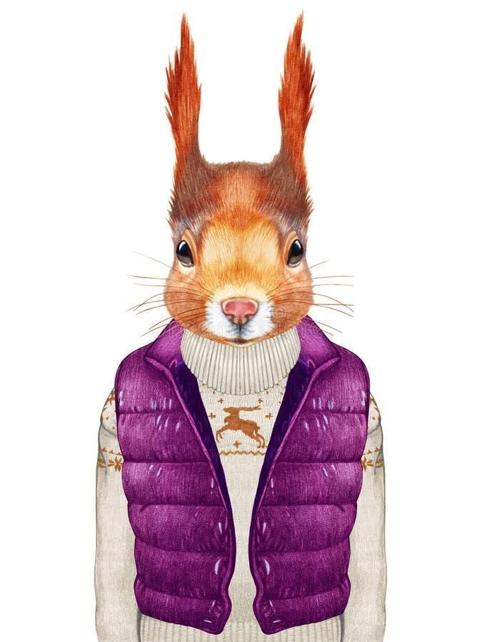 Animales como ser humano La ardilla en abajo concede y suéter stock de ilustración