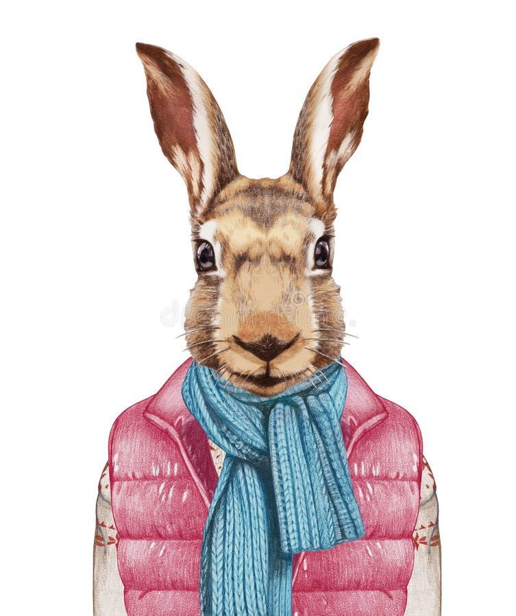 Animales como ser humano Las liebres en abajo conceden, suéter y bufanda libre illustration