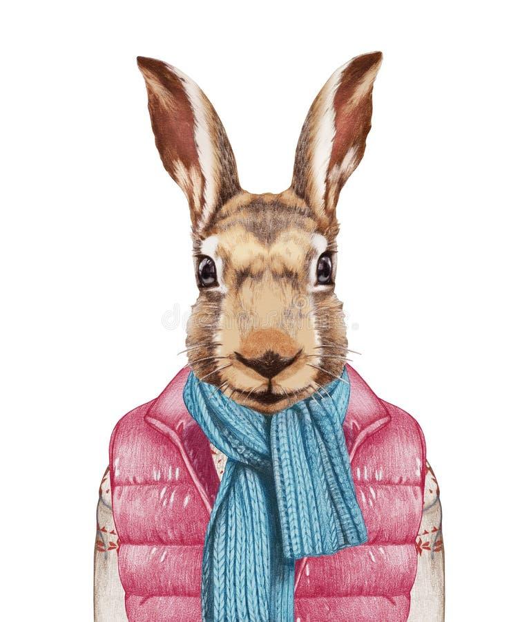 Animales como ser humano Las liebres en abajo conceden, suéter y bufanda stock de ilustración