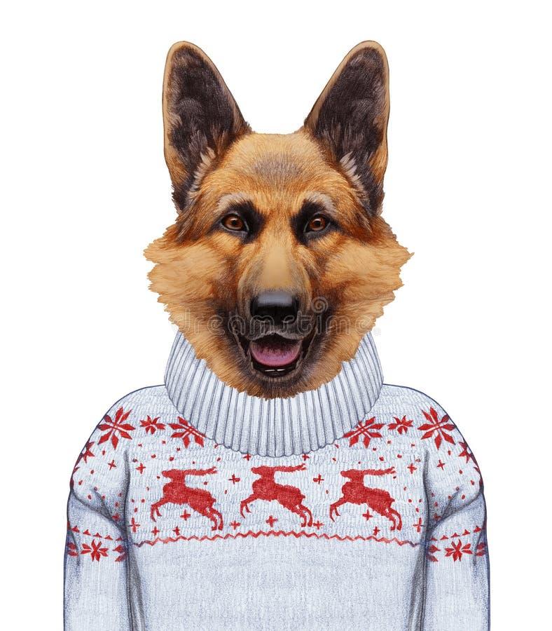 Animales como ser humano Retrato del pastor alemán en suéter ilustración del vector