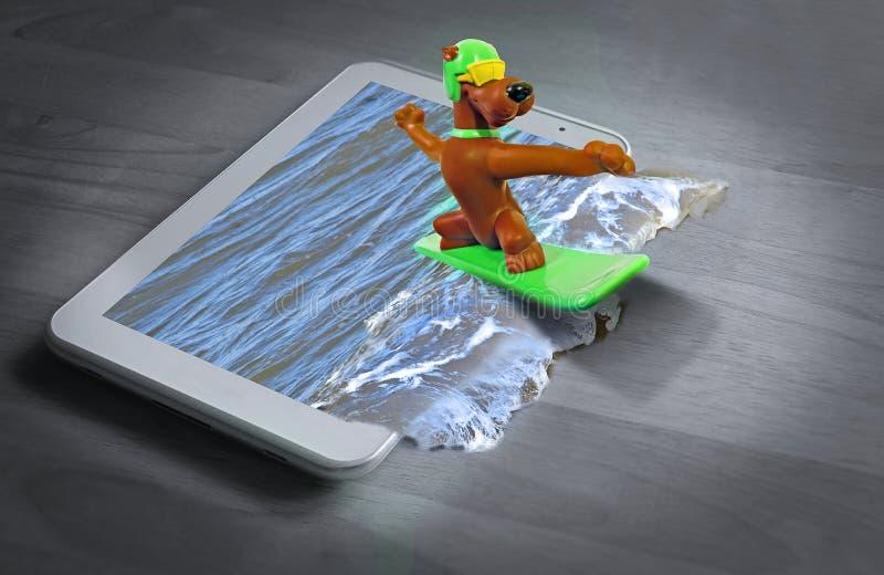 Animales de animales domésticos sanos activos del perro de la historieta de la tabla hawaiana que practican surf foto de archivo libre de regalías