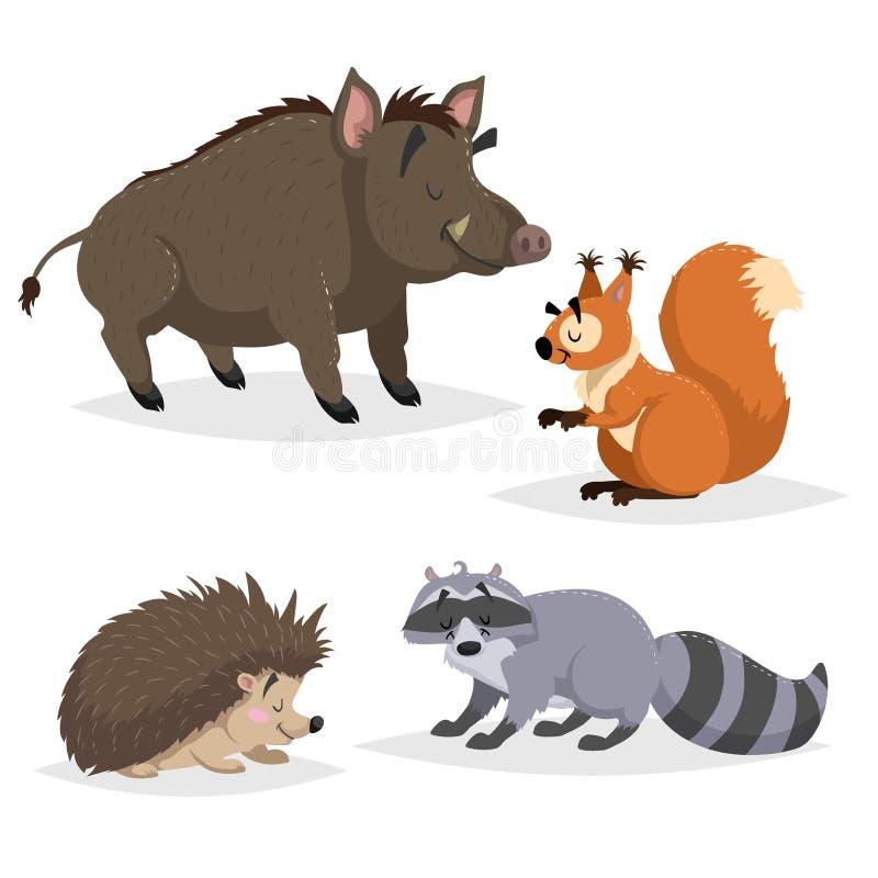 Animales del bosque fijados Mapache, erizo, ardilla y jabalí Sonrisa feliz y caracteres alegres Ejemplos del parque zoológico del stock de ilustración