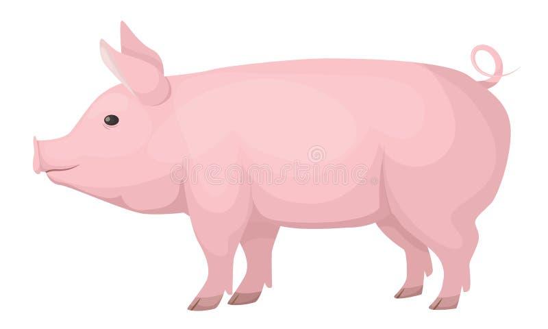 Animales del campo Cerdo nacional lindo, divertido, rosado, talla media libre illustration
