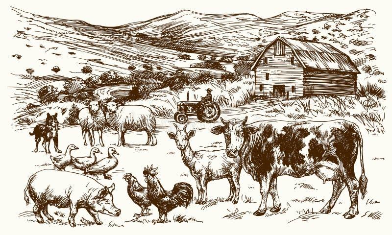 Animales del campo Granero y paisaje rural stock de ilustración